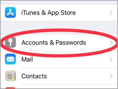 iPhone Settings Accounts and password