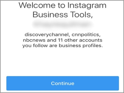 Instagram Account Settings Switch to Business Profile Continue