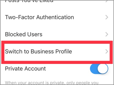 Instagram Account Settings Switch to Business Profile