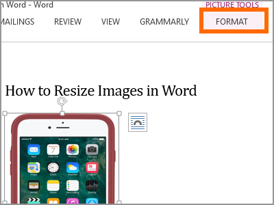 Resize Word Format Menu