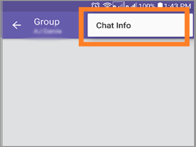 Viber Group Chat info