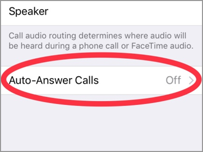 iPhone Settings Call Audio Routing Auto Answer Calls