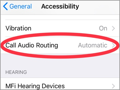 iPhone Settings Call Audio Routing