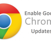 enable Google Chrome updates