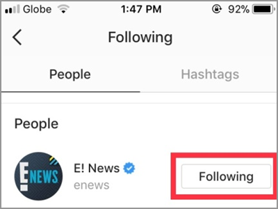 Instagram Following Button