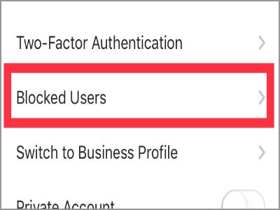 Instagram Profile Settings Blocked Users