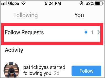 Instagram Follow Requests