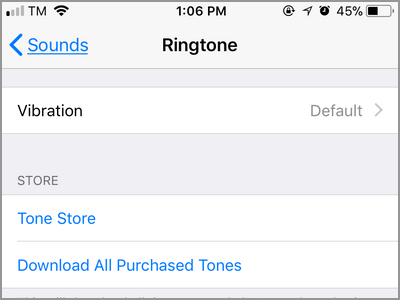 iPhone Settings Sounds Ringtone MEnu