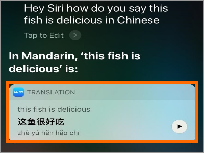 Siri Translate Translation