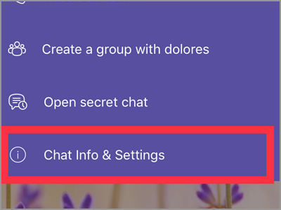 Viber User Chat Info and Settings