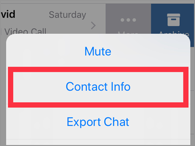 WhatsApp Chats Choose Chat More Contact info