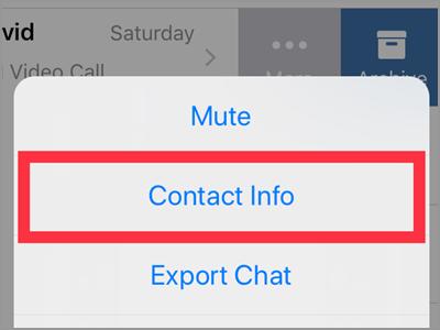 WhatsApp Chats Choose Chat More Contact info