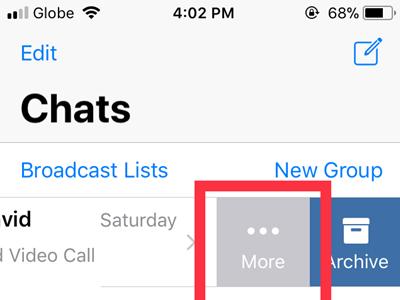 WhatsApp Chats Choose Chat More