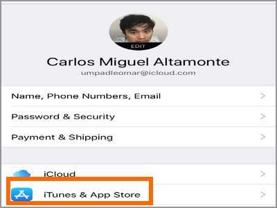 iPhone Settings Apple ID Itunes and App Store