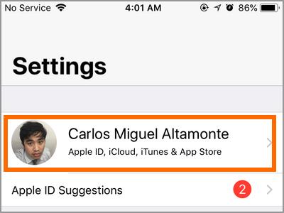 iPhone Settings iCloud ID
