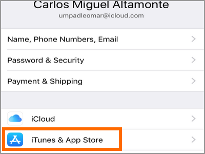 iPhone Settings iCloud iTunes and App Store