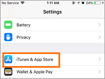 iPhone Settings iTunes and App Store