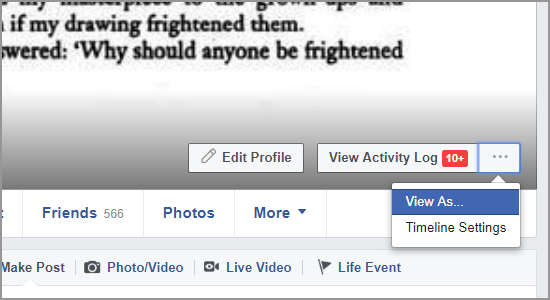 Facebook Timeline View As