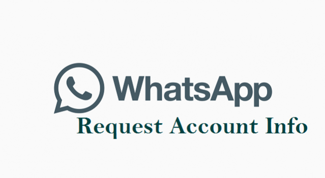 Request Account Info on WhatsApp