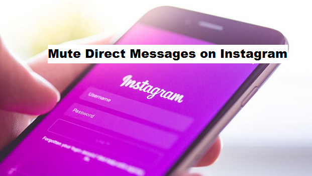 Mute Direct Messages on Instagram