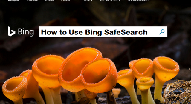 use bing safesearch