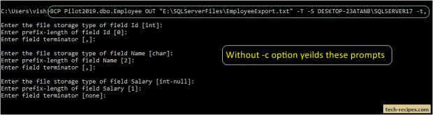 How To Use BCP In SQL Server