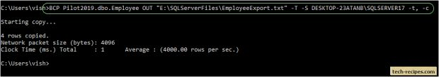 How To Use BCP In SQL Server_1