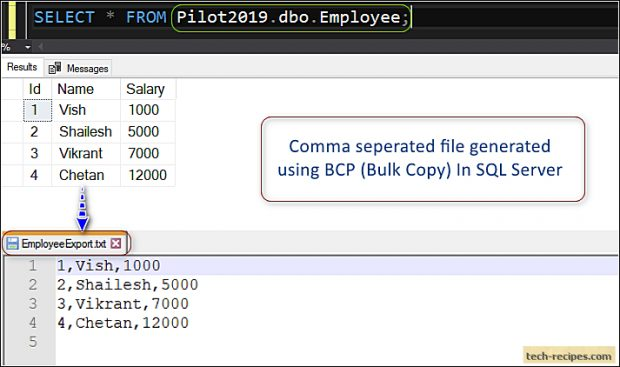 How To Use BCP In SQL Server_2