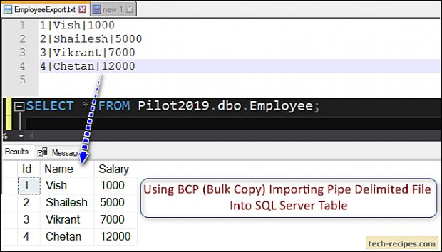 How To Use BCP In SQL Server_7