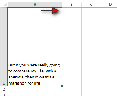 How to Wrap your Text in Excel Tutorial Step 4