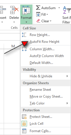 How to Wrap your Text in Excel Tutorial Step 5