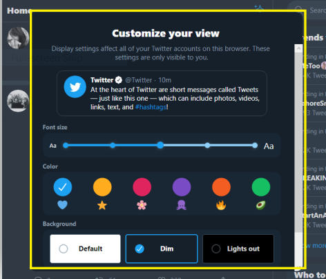 New features in Twitter's customization options.