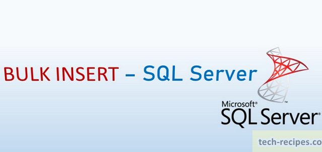 BULK INSERT SQL Server Import Data Header