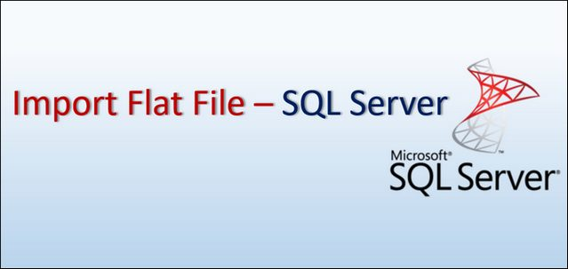 Import Flat File Data SQL Server_Header