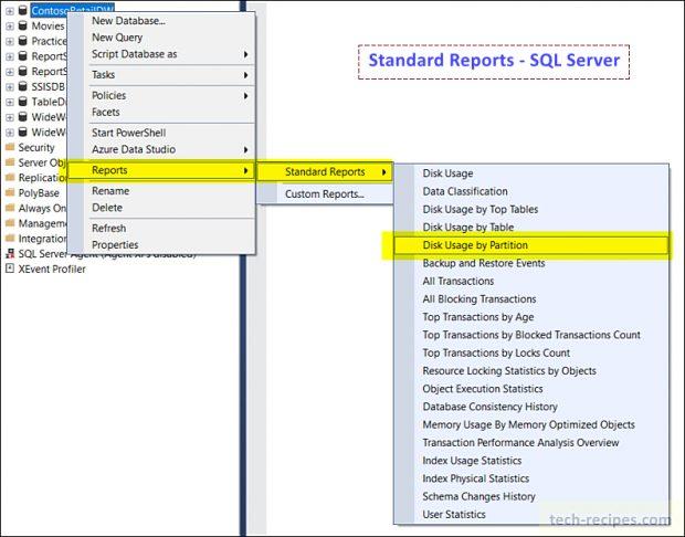 Standard Reports - SSMS - SQL Server