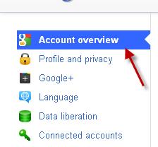 how to delete you google plus accounts