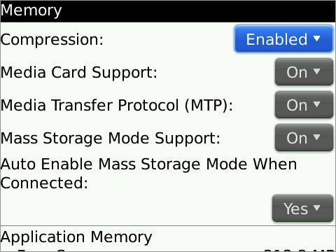 bb mass storage settings