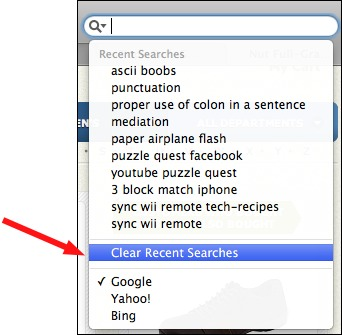erase google history on iphone safari how to clear the search box history 16897