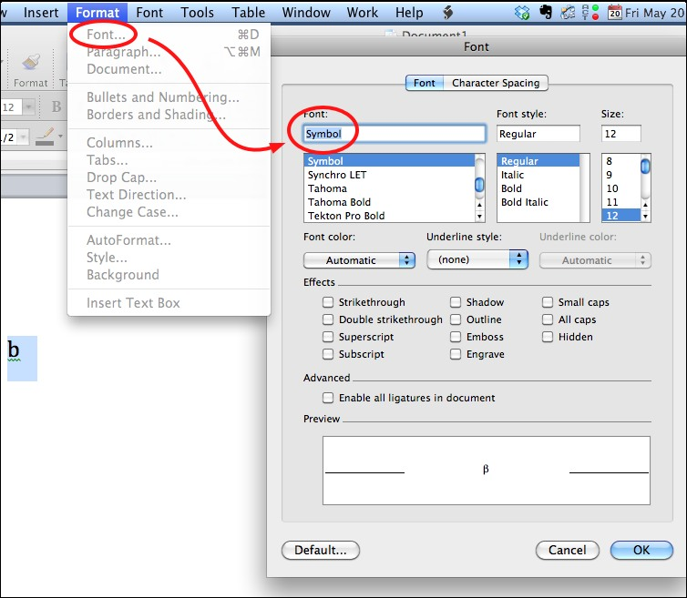 Adding Greek Letters to Word Documents